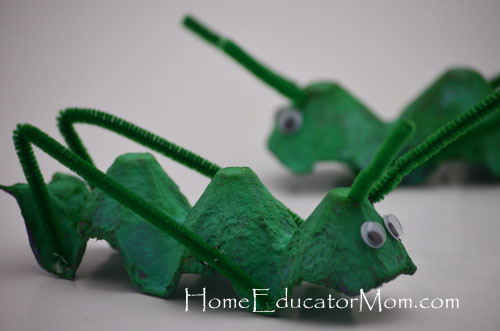 Locust craft homeeducatormom for John the baptist craft for kids